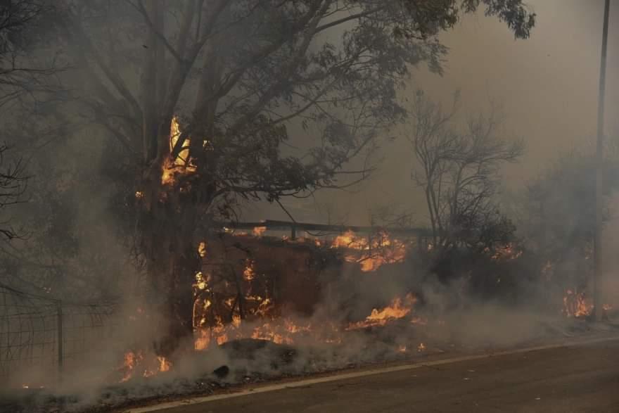 Φωτιά τώρα Αχαΐα: Οι άνεμοι έστρεψαν την πυρκαγιά στα Σελιανίτικα -  eretikos.gr